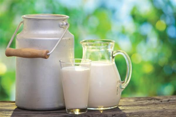 leite-musculacao