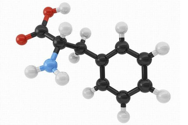 aminoacidos-musculacao
