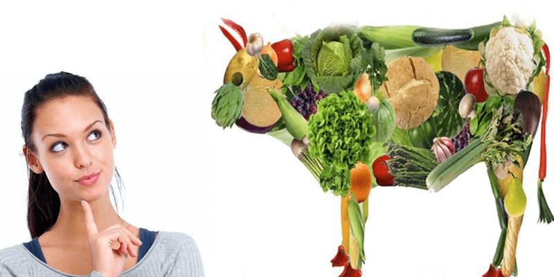 passos-fundamentais-para-consolidar-uma-dieta-vegana