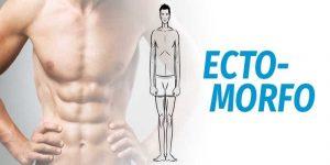 Imagem de Sugestão de Treino para Ectomorfo (Ganho de Massa Muscular)