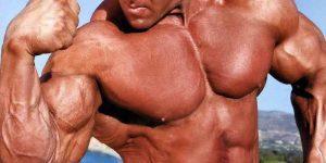 Imagem de Sugestão de treino para endomorfo