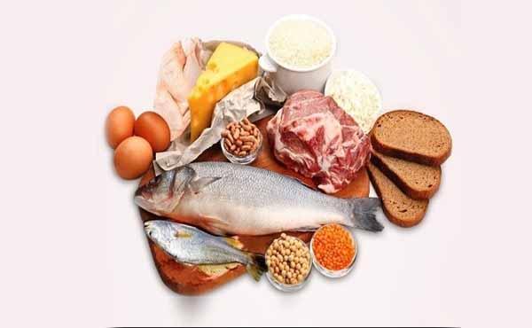 Alimentos ricos em Leucina