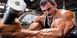 Imagem de Conheça um treino de pré-exaustão