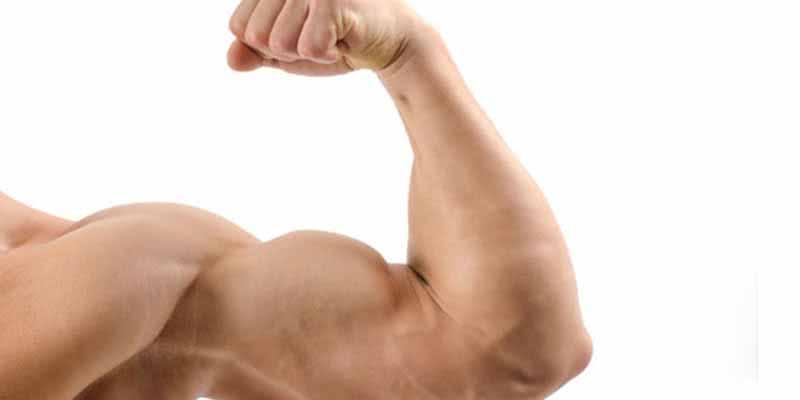 exercícios-braco