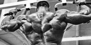 Imagem de Conheça 5 erros cometidos nos treinos de costas