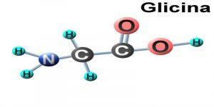 Imagem de Conheça melhor o aminoácido glicina