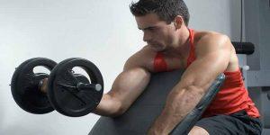 Imagem de Exercícios unilaterais em treino de força