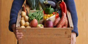 Imagem de A importância dos micronutrientes