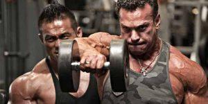 Imagem de Treinamento de força é importante para o fisiculturista?