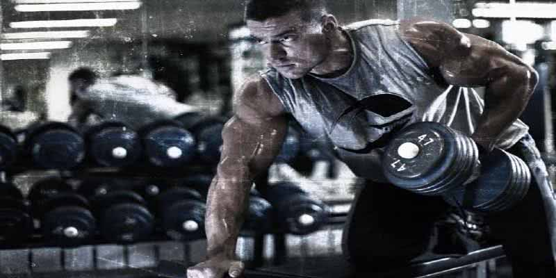 praticante- musculação