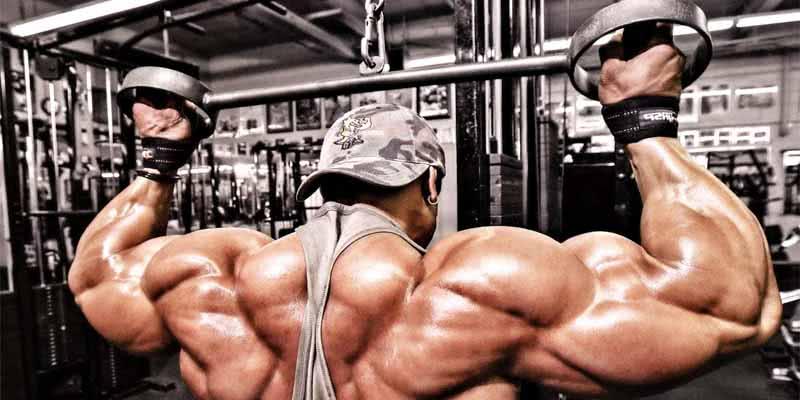 treino-costas
