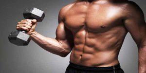Imagem de Exercícios isolados valem a pena durante o período de offseason?