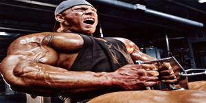 Image de la relation entre la force, la taille et la contraction musculaire