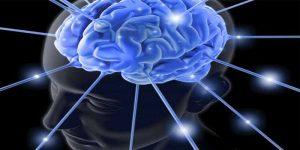 Imagem de Funcionamento dos hormônios na musculação