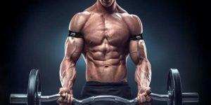 Imagem de O que é a hipertrofia muscular?