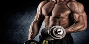 Imagem de A importância de se traçar metas e objetivos na musculação