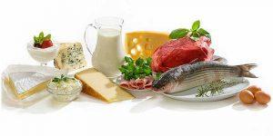 Imagem de O tipo de proteína e o tempo de sua digestão, interferem na força e hipertrofia?