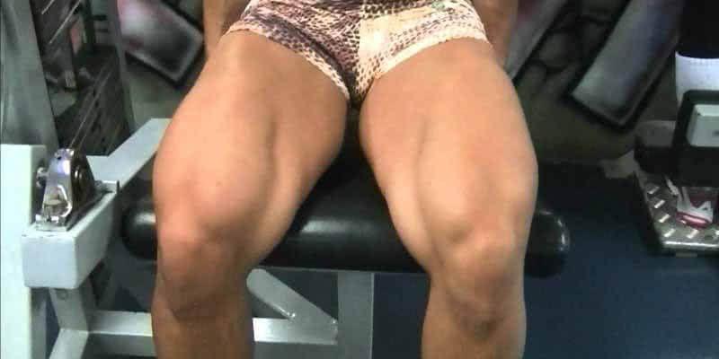 treino pernas