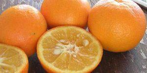 Imagem de Sinefrina: um estimulante que ajuda na perda de gordura