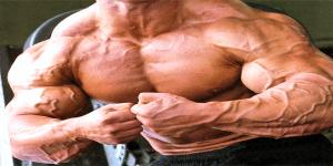 Imagem de Vascularização: um desejo da maioria dos praticantes de musculação