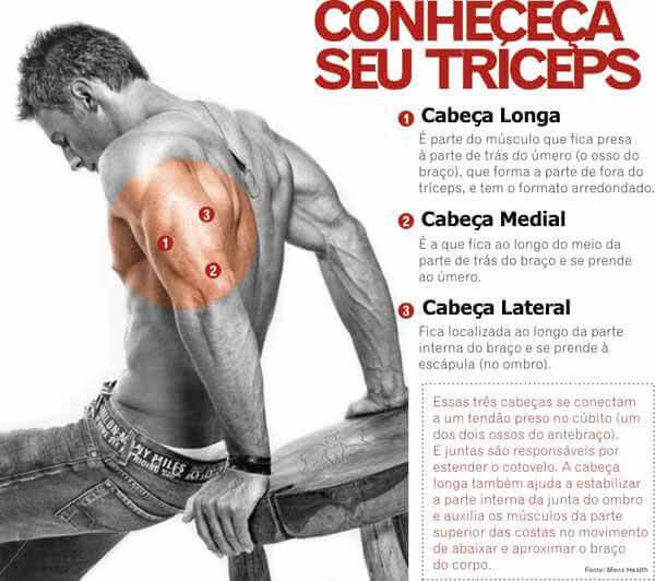 diferenca-entre-musculos-triceps-v2