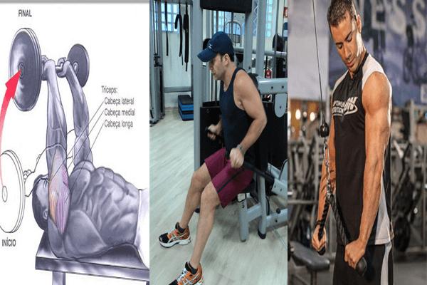Extensão de tríceps testa com barra EZ, Mergulho na máquina e Extensão de tríceps com puxador corda na polia