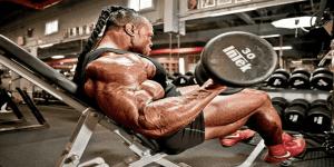 Imagem de Conheça um treino destruidor de braços