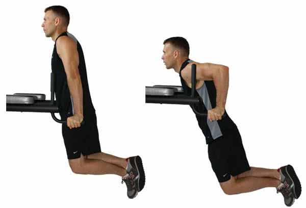 triceps-paralela