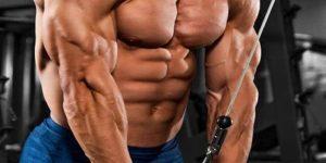 Imagem de O crescimento muscular não é uma mágica!
