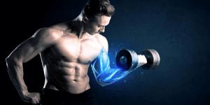 Imagem de Glicogênio para construir músculos