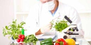 Imagem de Conheça 6 fatos científicos sobre a nutrição para praticantes de musculação