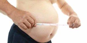 Imagem de Entenda como funciona o metabolismo das células gordurosas