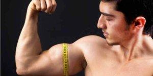 Imagem de Como calcular medidas máximas que o corpo pode alcançar treinando musculação?