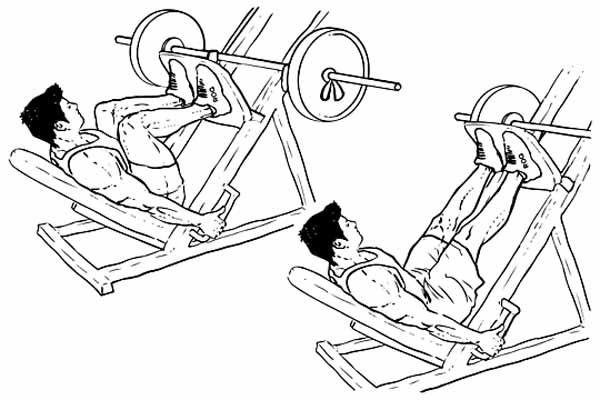Execução Correta do Leg Press