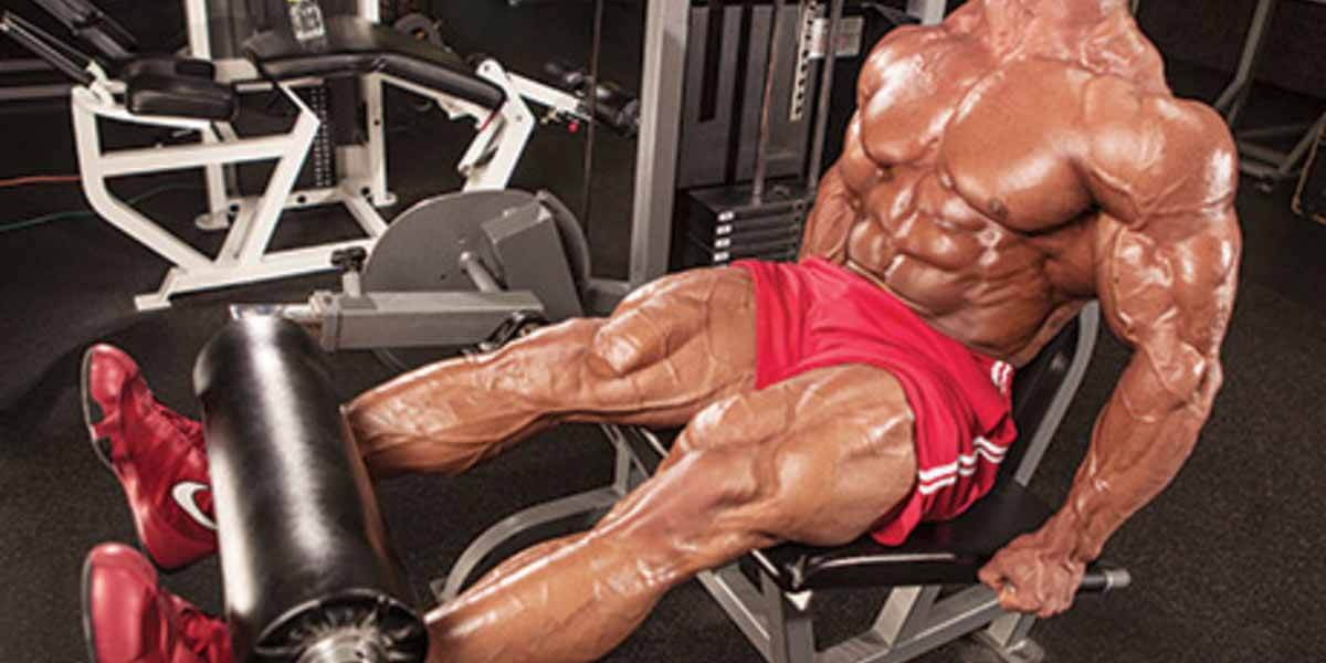 tríceps banco músculos trabalhados
