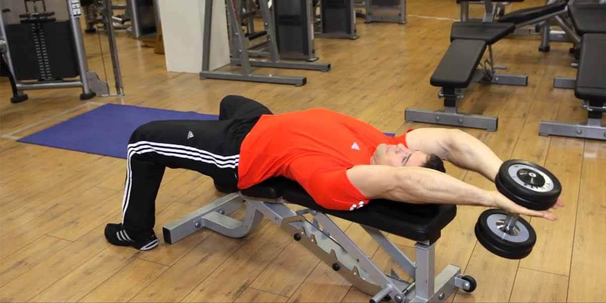 f6997ef026 Pullover  Um exercício seguro  Como Executá-lo Corretamente e seus ...