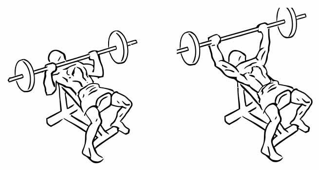 Exercício Supino Inclinado