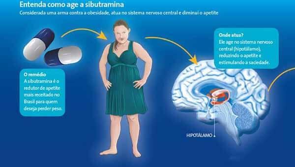Gráfico sobre como a Sibutramina age no Sistema Nervoso Central