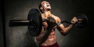 Barbell Image: Comment effectuer correctement le meilleur exercice de biceps!