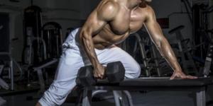 Imagem de Devemos Treinar Todos os Músculos Igualmente (mesmas séries, repetições e etc)?