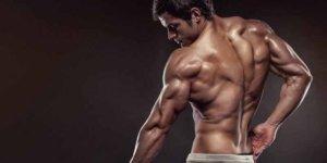 Image de Discover 05 Exercices principaux pour conquérir des triceps gros et volumineux