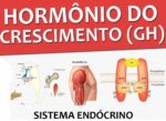 Imagem de GH: Aprenda tudo sobre o Hormônio do Crescimento!