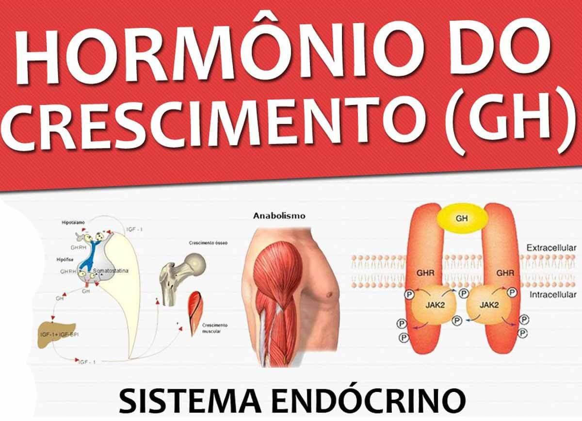 hormonio-crescimento-thumb