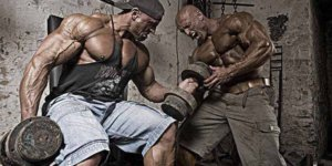 Image des principaux exercices de Meet 05 pour avoir des biceps forts et volumineux!