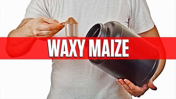 Suplemento Waxy Maize na Refeição Após o Treino