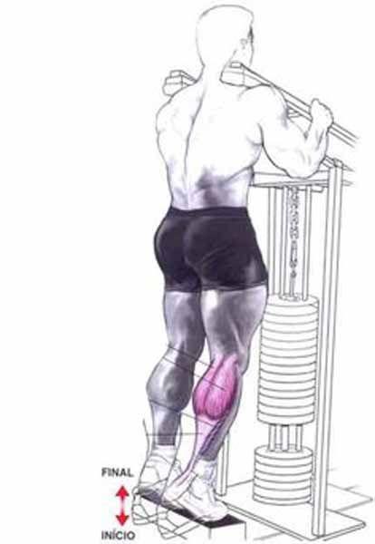 Exercício Flexão Plantar em Pé