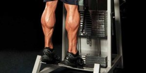 Image de Meet the Best Calf Exercises