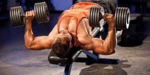 Imagem de Qual o número ideal de exercícios para cada grupamento muscular?