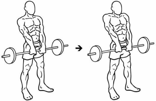 Exercício Encolhimento com barra pela frente (pegada pronada)