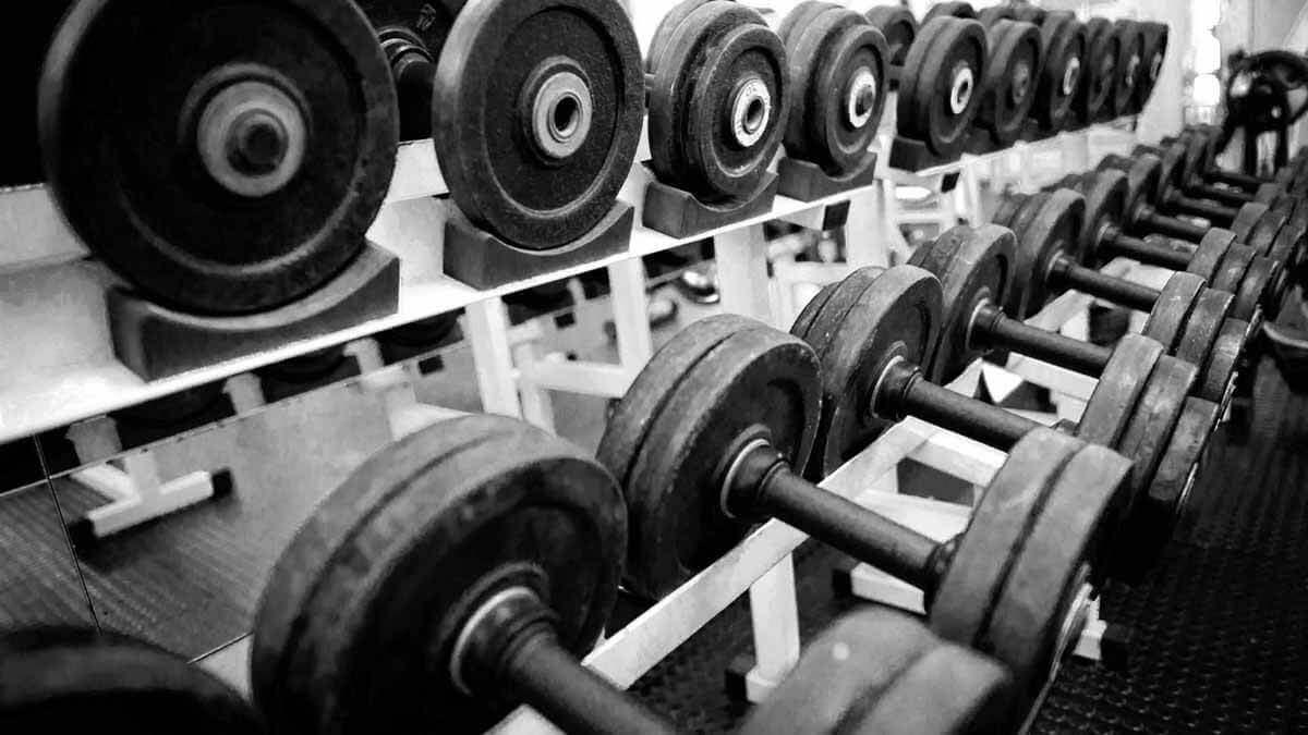 haltes-treino-musculacao